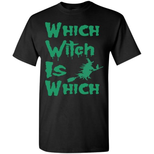Which witch is which funny halloween lover gift t-shirt